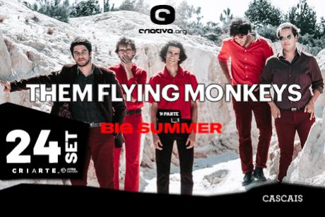 THEM FLYING MONKEYS + BIG SUMMER